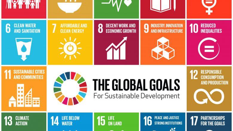 SDGs-GlobalGoalsForSustainableDevelopment-idema