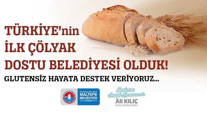 maltepe-colyak-dostu-belediye_idema