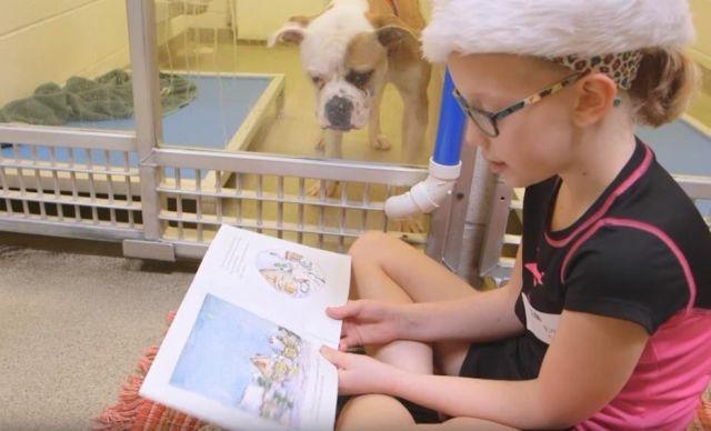 Çocuklar Barınak Köpeklerine Masal Okuyor!