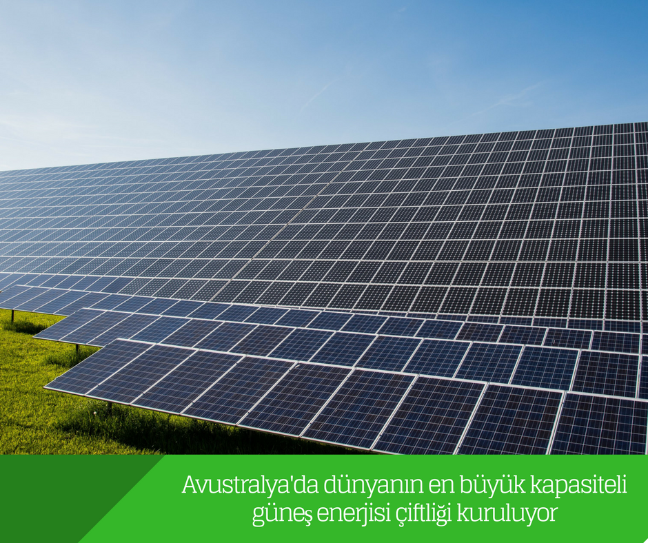 Avustralya'da dünyanın en büyük kapasiteli güneş enerjisi çiftliği kuruluyor