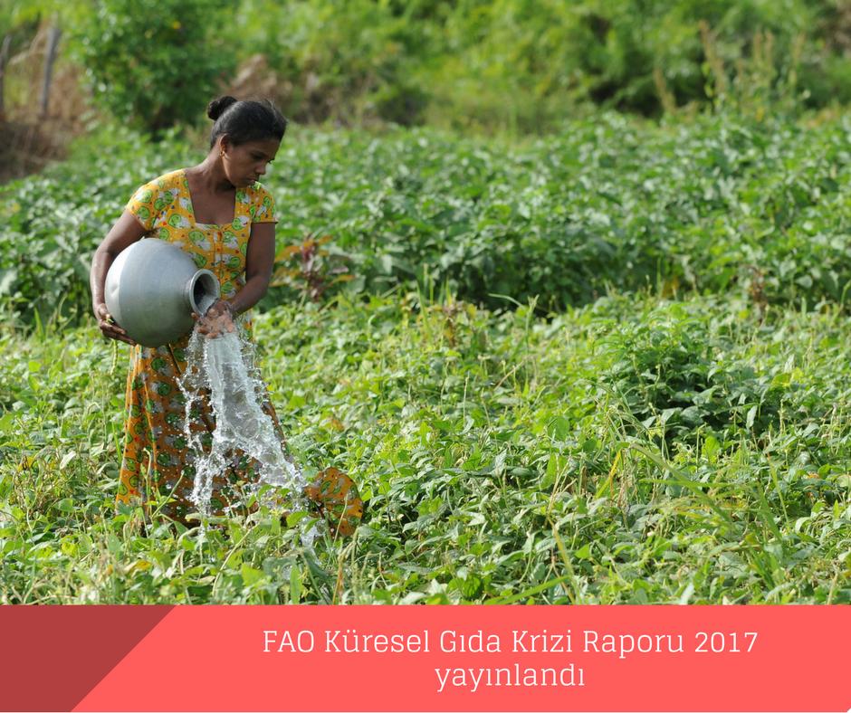 FAO Küresel Gıda Krizi Raporu 2017 yayınlandı