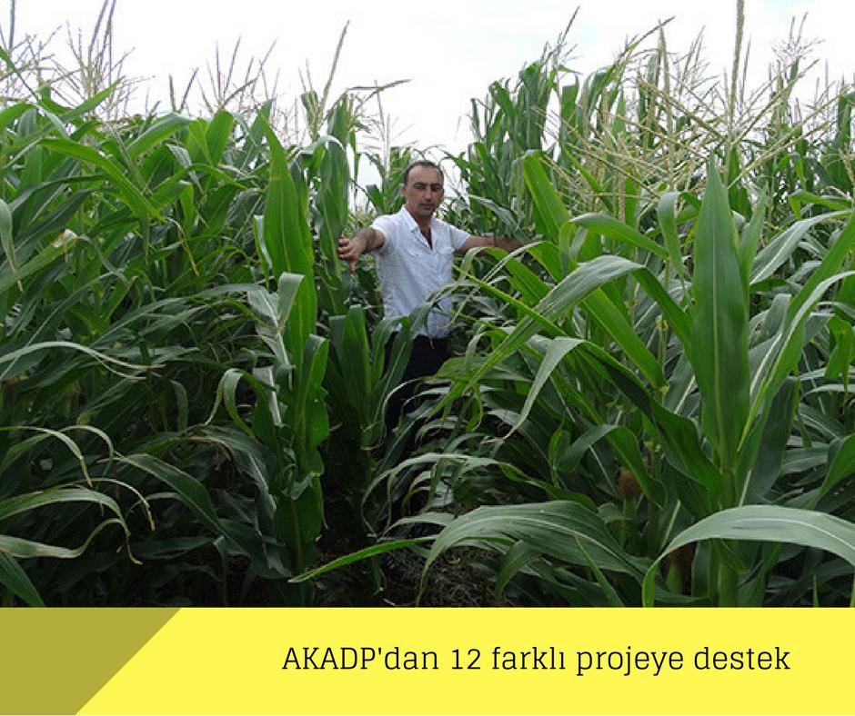 AKADP'dan 12 farklı projeye destek