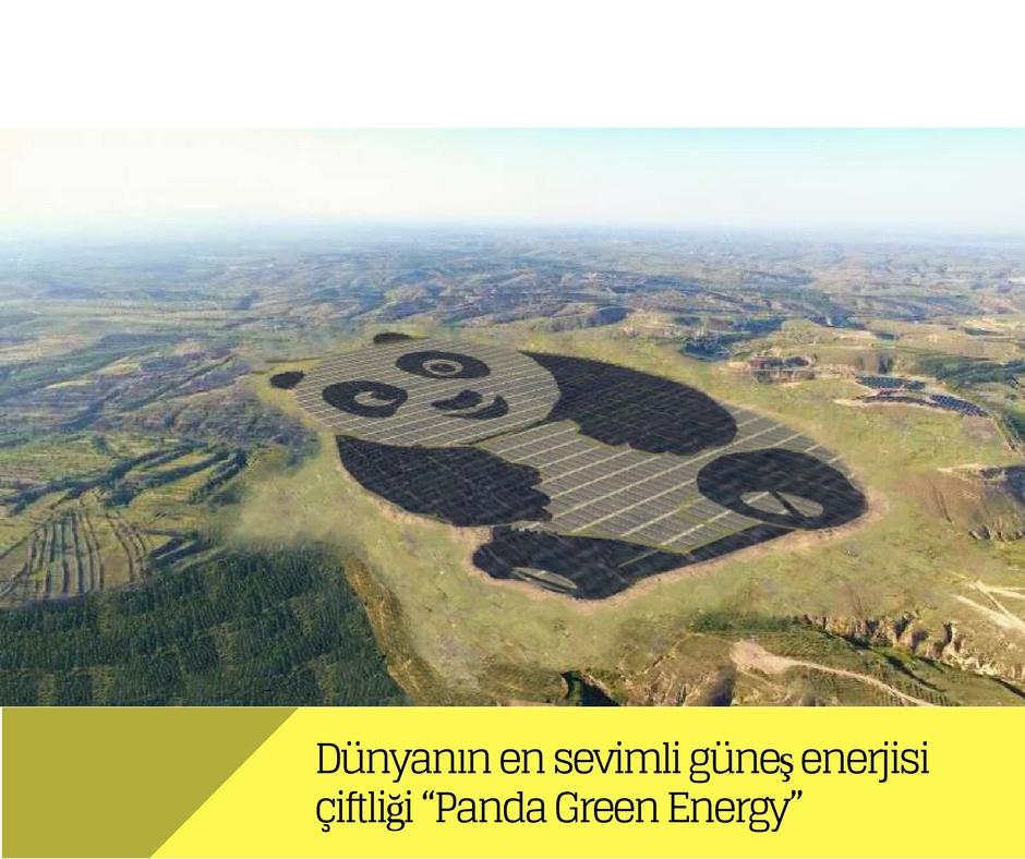 """Dünyanın en sevimli güneş enerjisi çiftliği """"Panda Green Energy"""""""