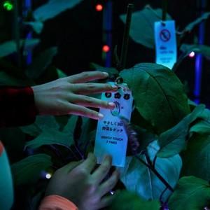 tokyo-digital-vegetable-greenhouse-party-6