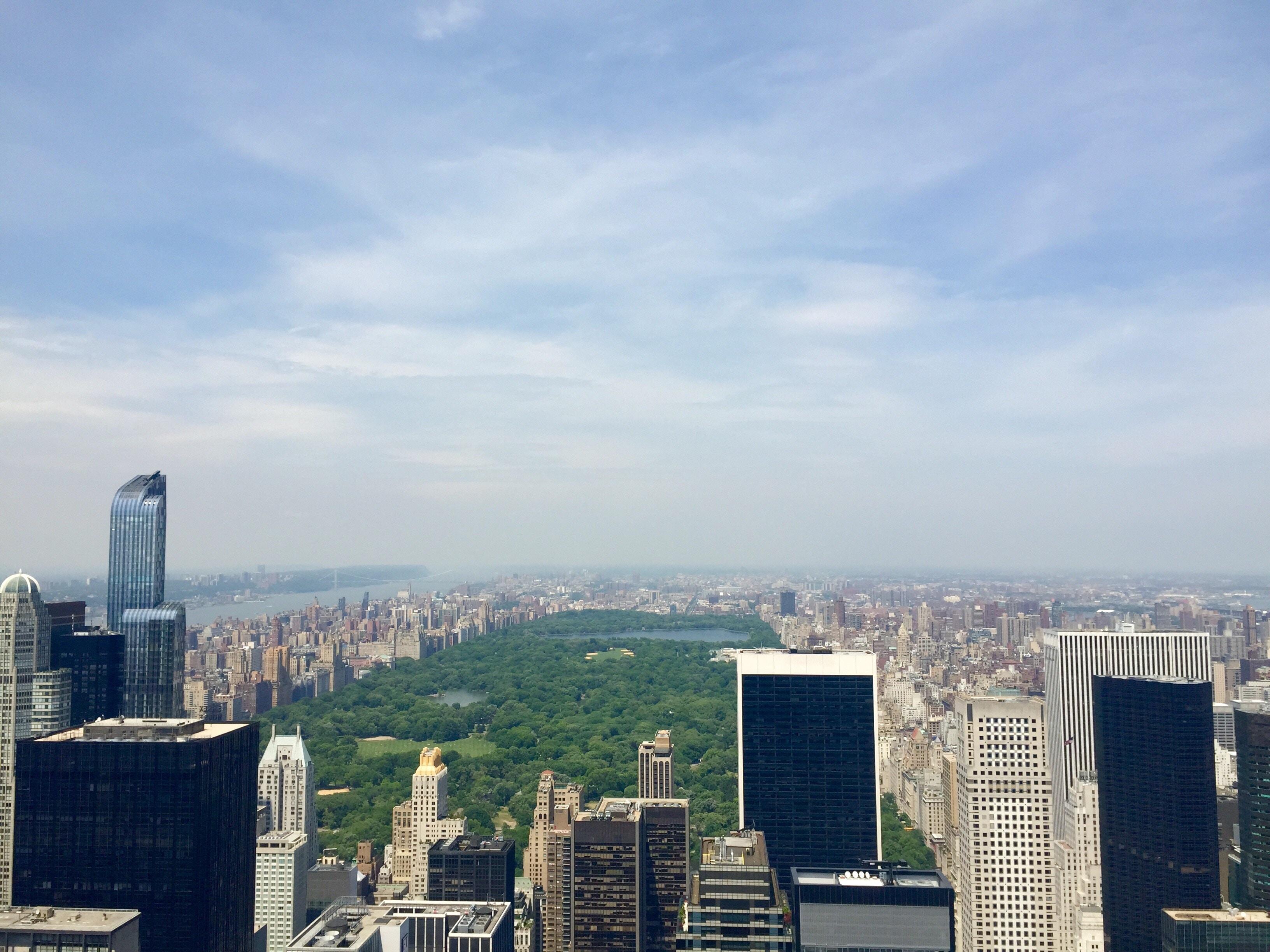 """New York, """"Yeni Yeşil Antlaşma"""" çerçevesinde harekete geçti!"""