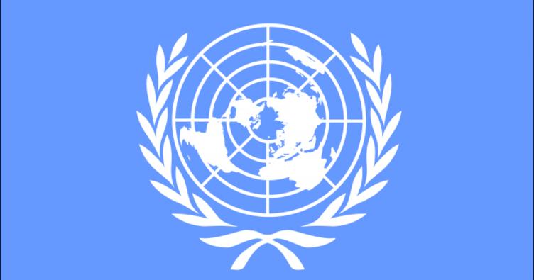 Birleşmiş Milletler, gönüllü çalışma arkadaşları arıyor!