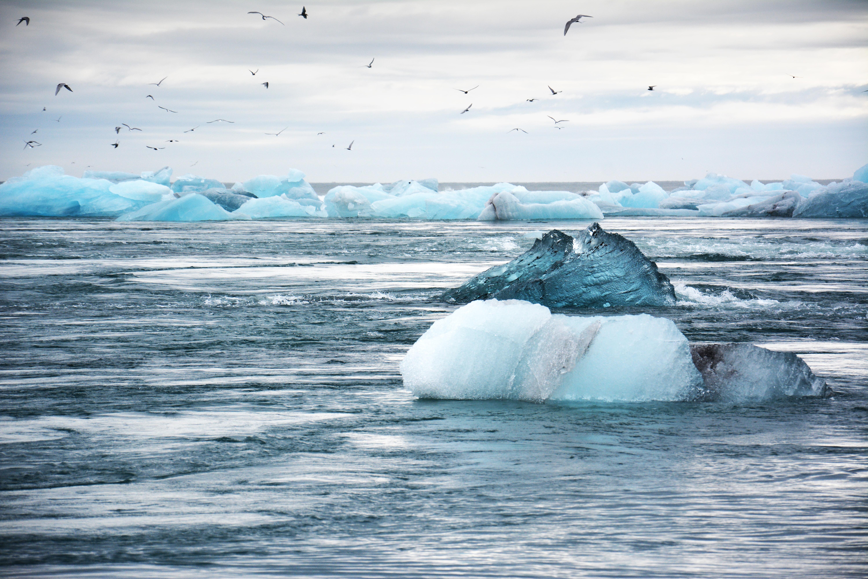 İklim Haftası, 23-29 Eylül tarihleri arasında New York'ta gerçekleşecek!